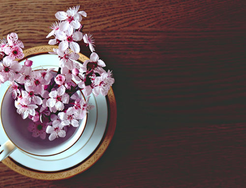 Primavera en adelante (Ciertas pesadillas)